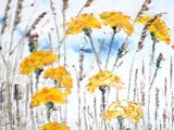 Dandelions in Field (sold)